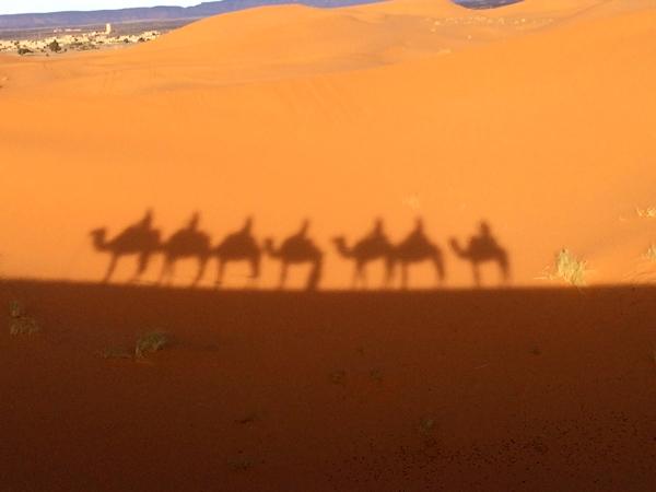 サハラ砂漠IMG_0316