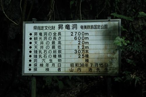 昇竜洞_02