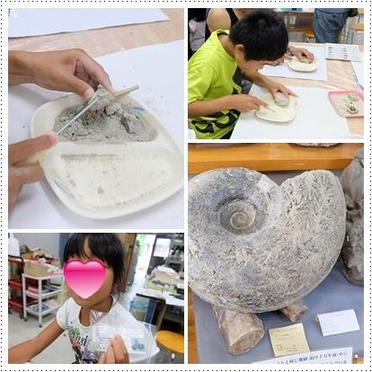 化石体験館