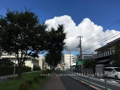 20160729001.jpg
