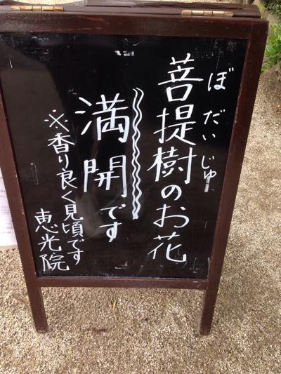 fc2blog_201606051838342a9.jpg