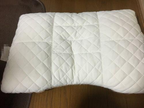 ブログNo.597(枕ねこ)2