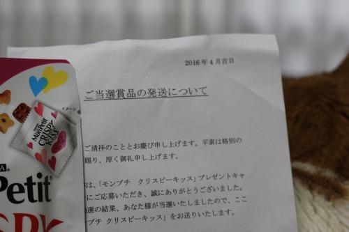 ブログNo.600(モンプチ クリスピーキッス当選♪と試供品)8