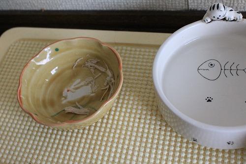 ブログNo.609(高級缶詰いっぱい)20