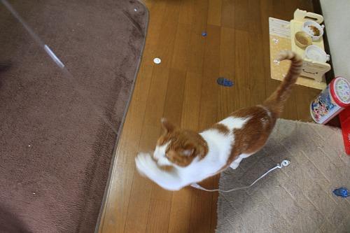 ブログNo.626(破壊したら新種のおもちゃが出てきた?)2
