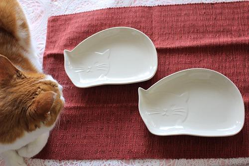 ブログNo.649(猫の形のお皿とムフフな物♪)1