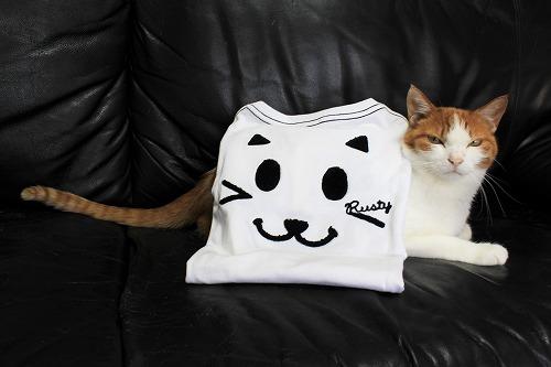 ブログNo.695(にゃんこのTシャツ)3