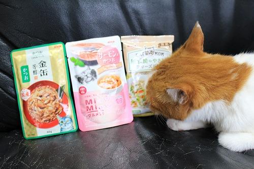 ブログNo.728(アイシアカレンダー結果に励ましてくれる猫)3