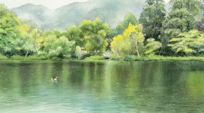 雨の湖dia