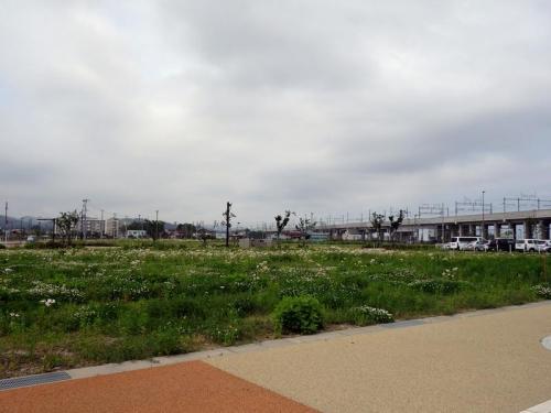 上越妙高駅西口3