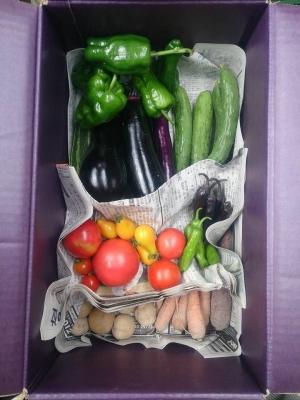 20160715野菜セット