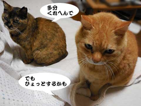 16_04_23_3.jpg