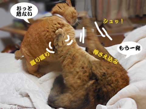 16_04_25_4.jpg