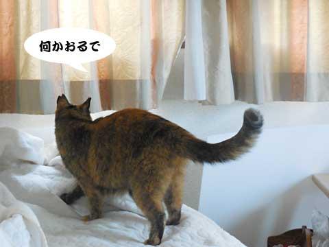 16_04_29_3.jpg