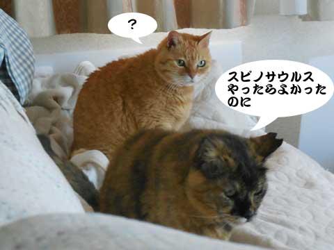 16_04_29_5.jpg