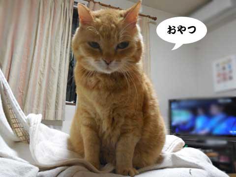 16_05_10_1.jpg
