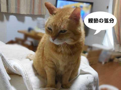 16_05_10_2.jpg