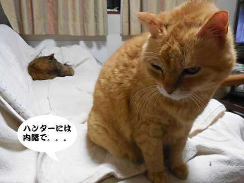 16_05_10_5.jpg