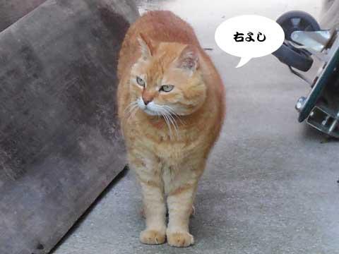 16_05_12_6.jpg