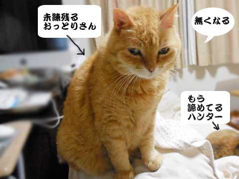 16_05_21_4.jpg