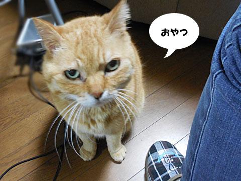 2016_04_20_2.jpg