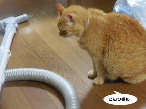 2016_06_23_5.jpg