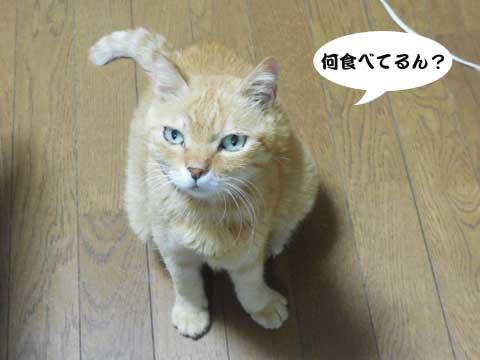 2016_08_10_1.jpg