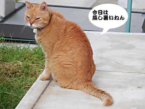 2016_09_07_1.jpg