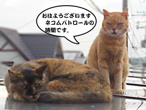 2016_09_16_1.jpg