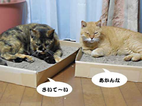 2016_09_18_2.jpg