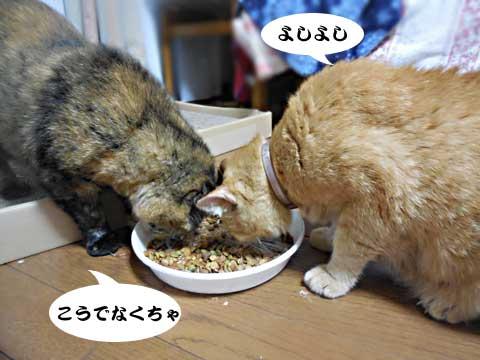 2016_09_18_3.jpg