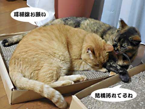 2016_09_20_1.jpg
