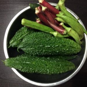 まだまだ夏野菜採れてます