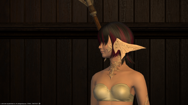 s_ffxiv_20160708_165304.png
