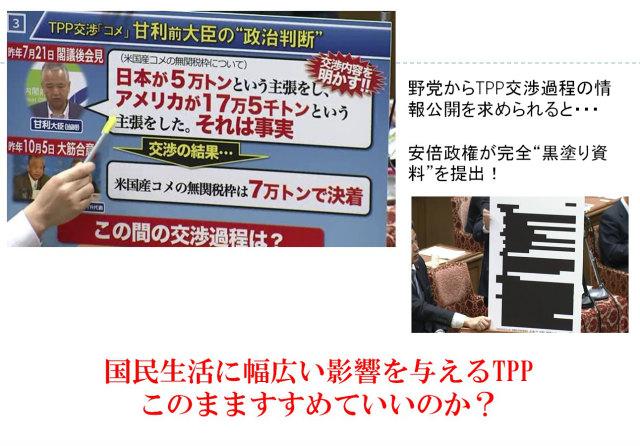 TPP8.jpg