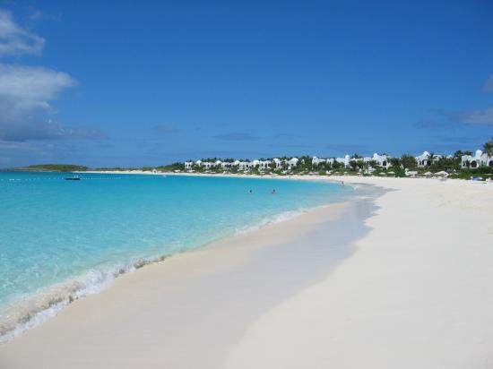 ハートの珊瑚たち Anguillaより