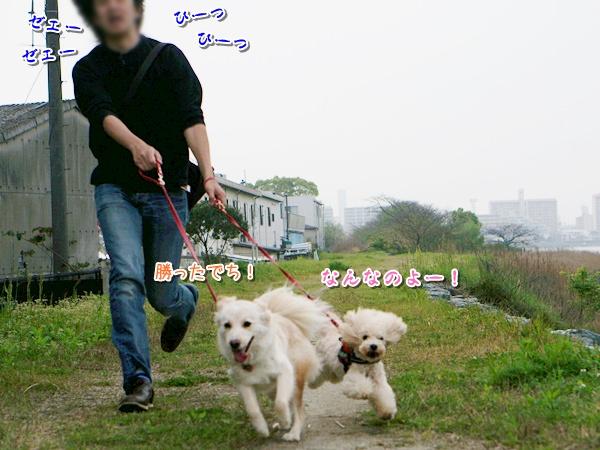 20160413_6.jpg