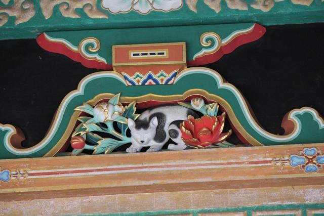 IMG_0363眠り猫
