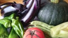 夏野菜 (1)