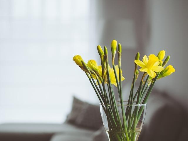 flowers-819361_640.jpg