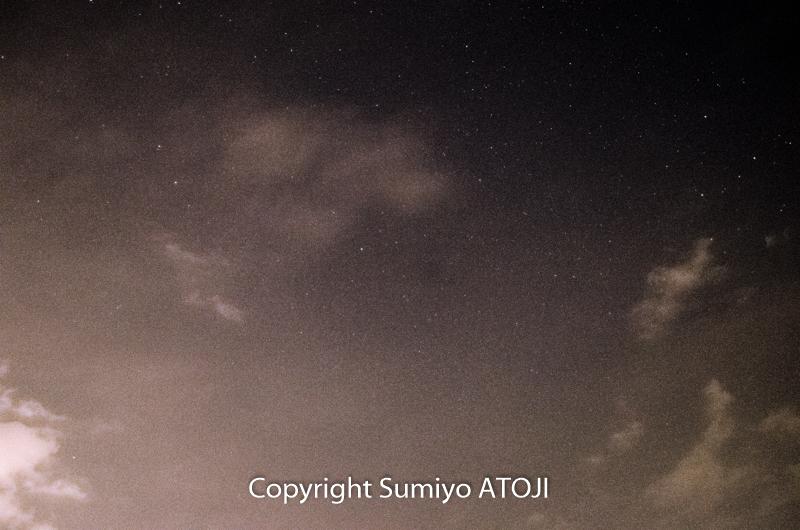 DSC_3519-2.jpg