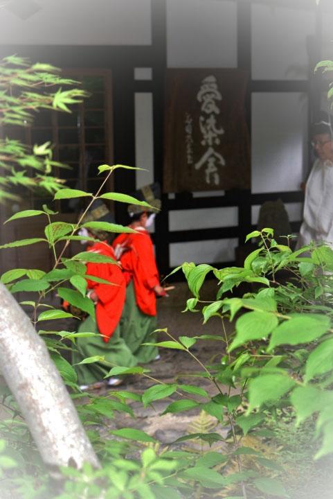 yasurai