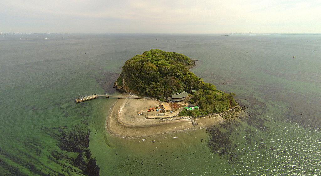 猿島空撮画