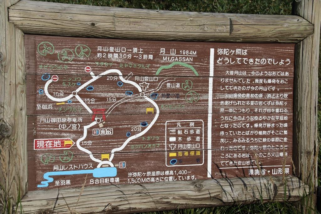 弥陀ヶ原湿原の様子_12