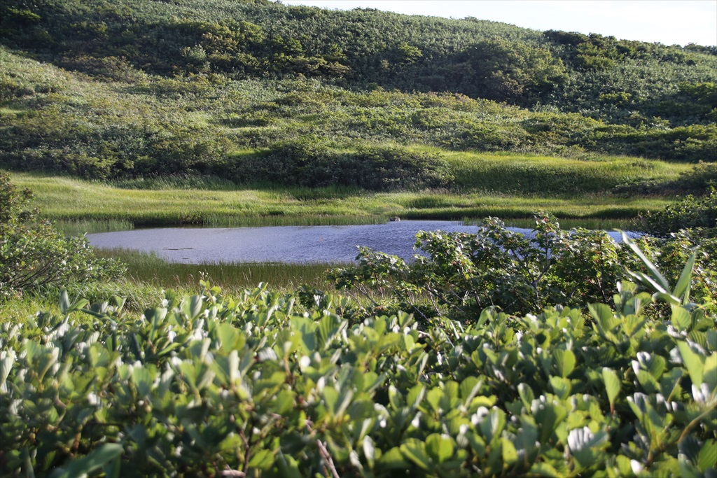 ここからは池塘がたくさんあった_3