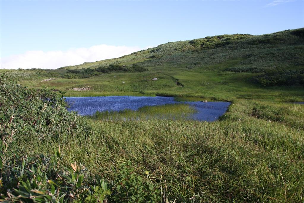 ここからは池塘がたくさんあった_6