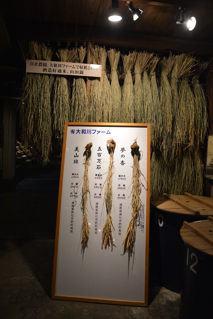 江戸蔵_13