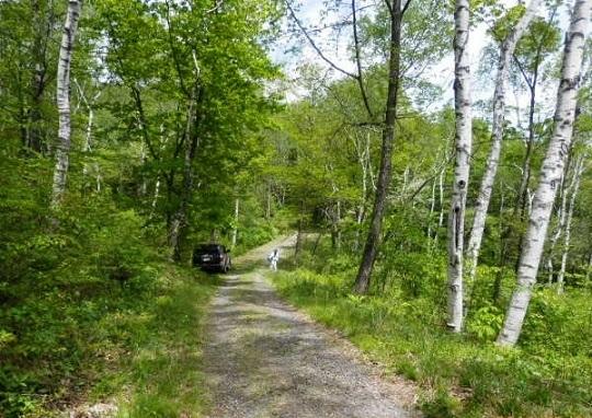 バラギ湖周辺コース
