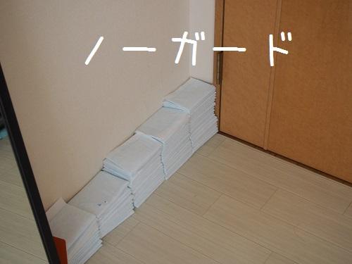 P8090005.jpg