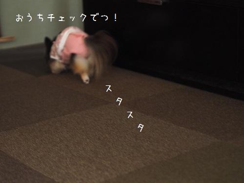 PA160052.jpg